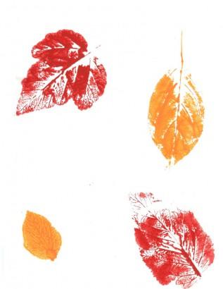 Leaf Prints—Drop-in
