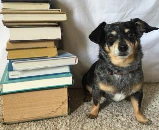 Barks 'n' Books